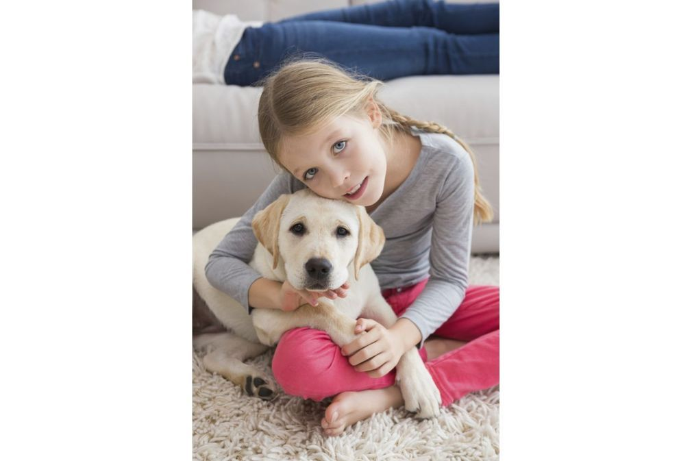 Animal de compagnie pour un enfant : lequel choisir