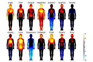 Des chercheurs révèlent la carte corporelle de nos émotions