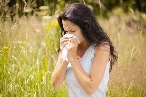 Pollens : 35% des allergiques affirment que leurs allergies ont empiré ces dernières années