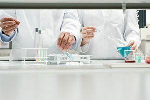 Une chercheuse meurt de la maladie de la vache folle contractée pendant une expérience