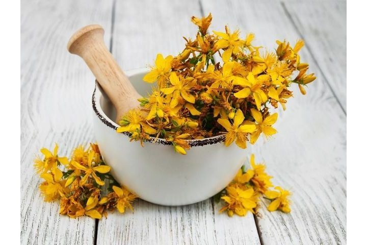 St. John's Wort against depression - Doctissimo