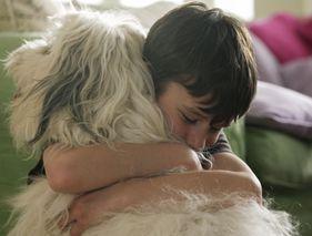 Cynothérapie : quand le chien aide à soigner