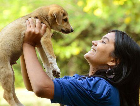 À quel âge adopter un chien ?