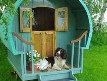 Niche pour chien : 30 maisons originales pour votre toutou