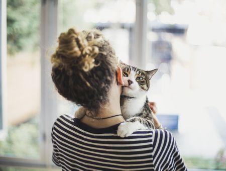Vous voulez créer un lien particulier avec votre chat ? On a trouvé comment faire