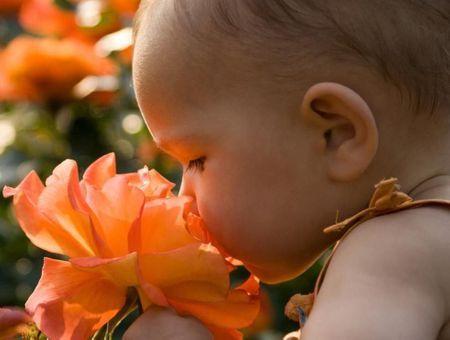 L'éveil des sens de bébé