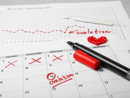 Ovulation tardive : symptômes, causes, conséquences sur la fertilité