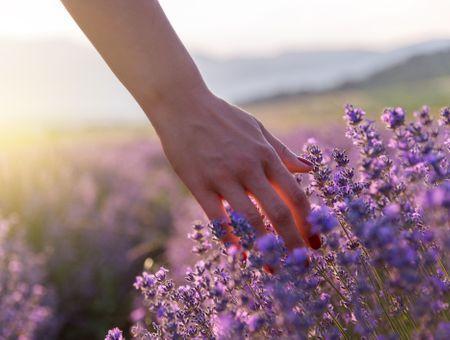 Naturopathie : Qu'est-ce que l'énergie vitale ?