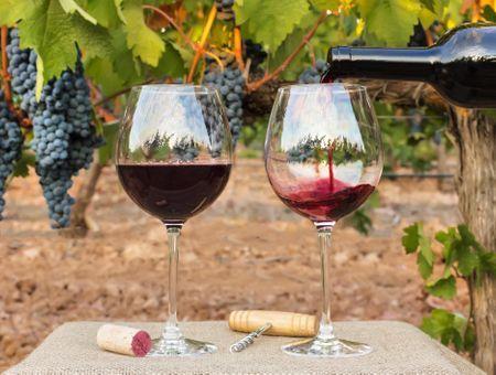 Le vin est-il bon pour le cœur ?