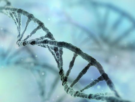 Information génétique : l'ADN, les gènes, les chromosomes et le génome