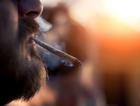 Cannabis thérapeutique: le cahier des charges des futurs médicaments publié