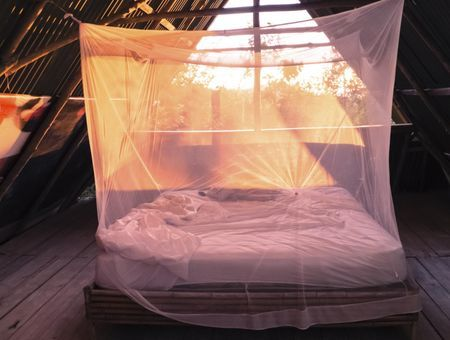 Paludisme : les mesures de protection efficaces