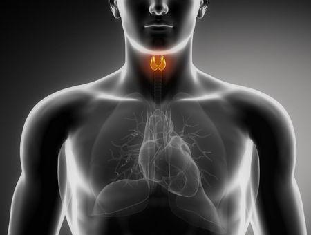 Chirurgie de la thyroïde : quelles sont les complications possibles ?