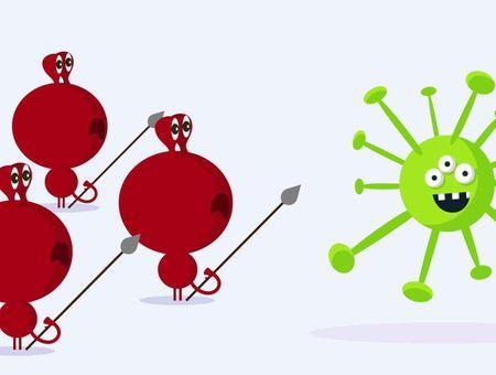 Les vaccins : comment ça marche ?