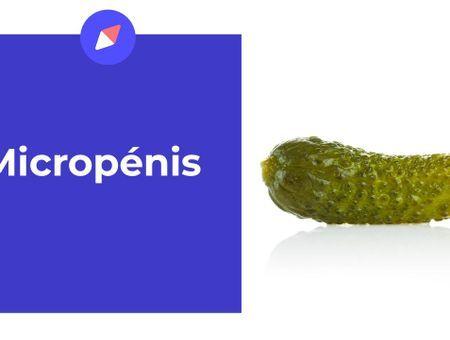 Le micropénis