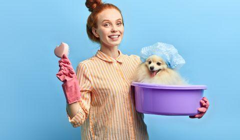 Les chiens ont (eux aussi) droit à leurs produits de beauté éco-friendly