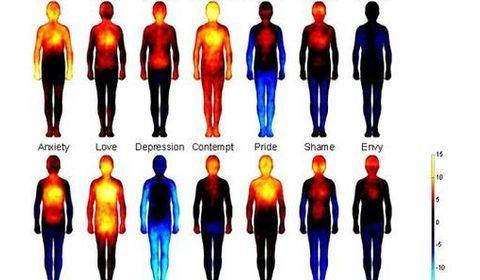 carte corporelle emotions