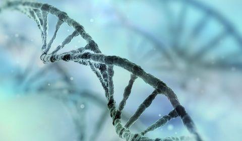 information-genetique