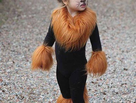 Déguisement du lion - Halloween : 30 idées de déguisement pour enfant