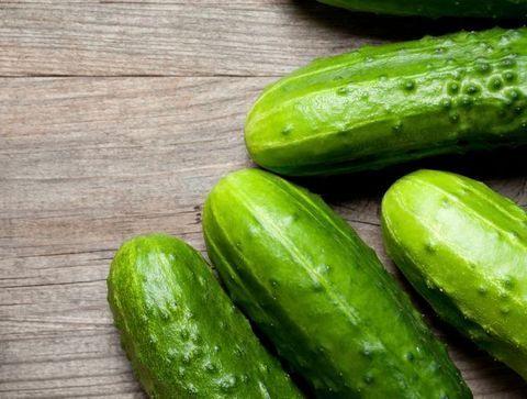 Concombre - Doctissimo -Les aliments à calories négatives