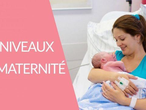 Les différents niveaux de maternité