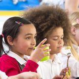 Cantine scolaire : quels sont les tarifs des repas ?