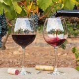 Le vin c'est bon pour le coeur