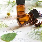 Le guide des plantes médicinales