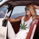 Le cannabis peut être mortel