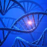Les différents modes de transmission des maladies génétiques
