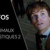 """5 infos sur le film pour briller en société sur le film """"Les Animaux Fantastiques 2"""""""