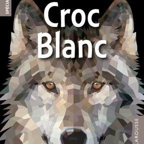 Croc blanc, Jack London
