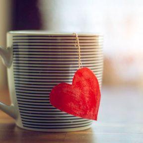 Prévention contre les maladies cardiovasculaires