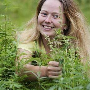 Cannabis : plus de détente et d'humour...