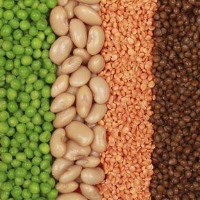 Légumes secs et aliments riches en soufre