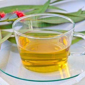 Traitant : une infusion de feuilles d'eucalyptus et un jus de citron