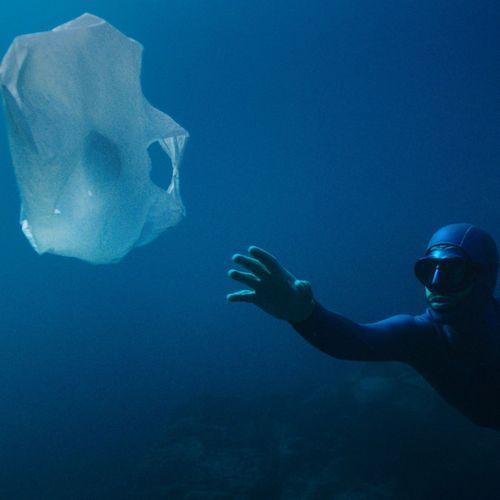 Biotherm engagé pour le futur de nos océans